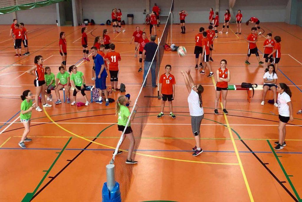 conoce cómo es el entrenamiento de voleibol para principiantes