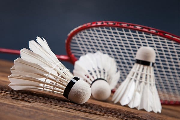 ver historia del badminton