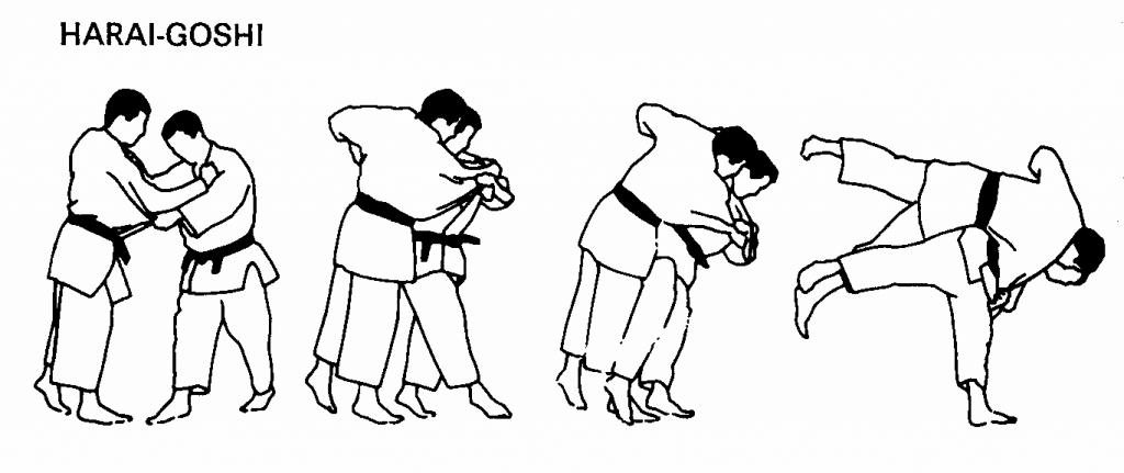 Harai goshi judo