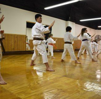 Karate Shotokan: kata, kumite, técnicas, cinturones y más