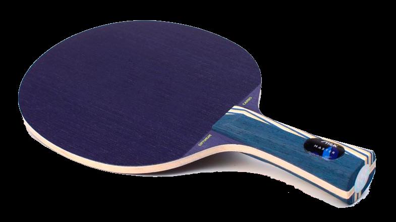 Raquetas-de-tenis-de-mesa-3