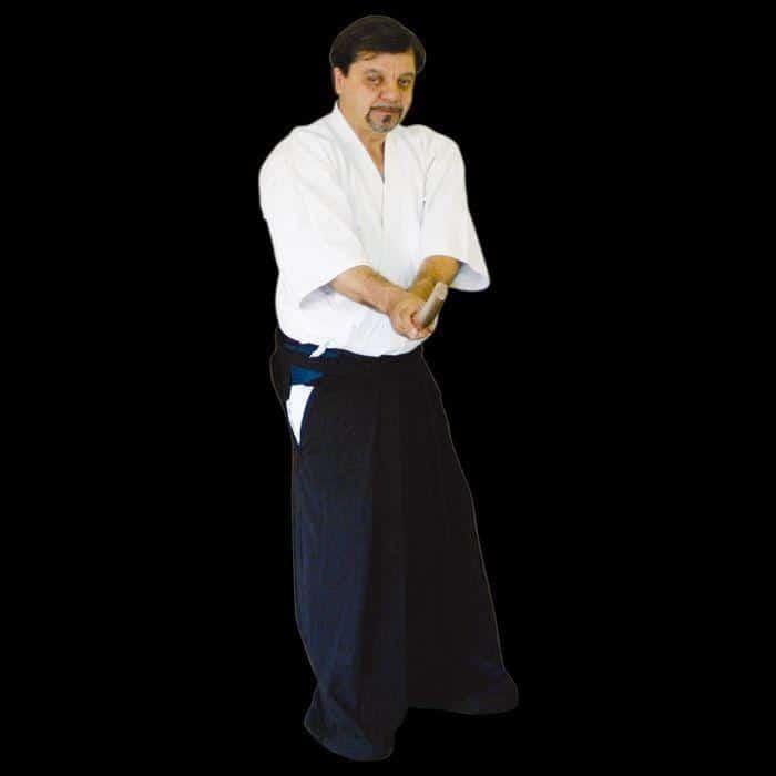 ver aikido