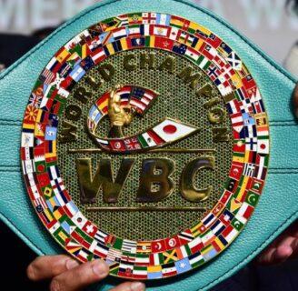 Campeones del Boxeo: Por categorías y todo lo que necesita saber