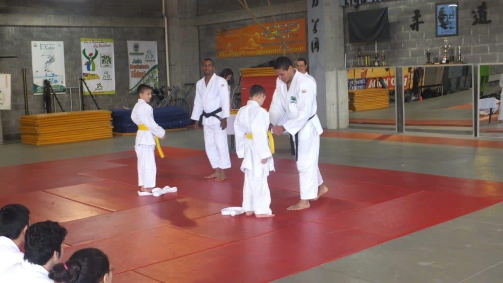 cambio de cinturones en judo