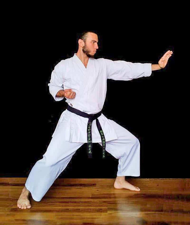ver karate