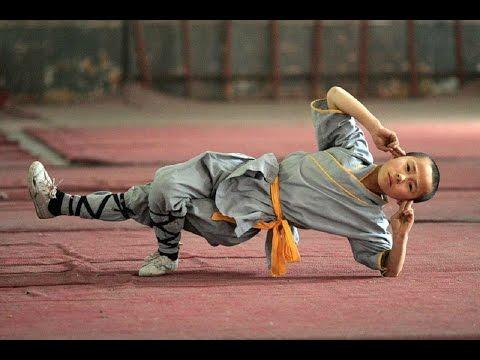 ver kung fu