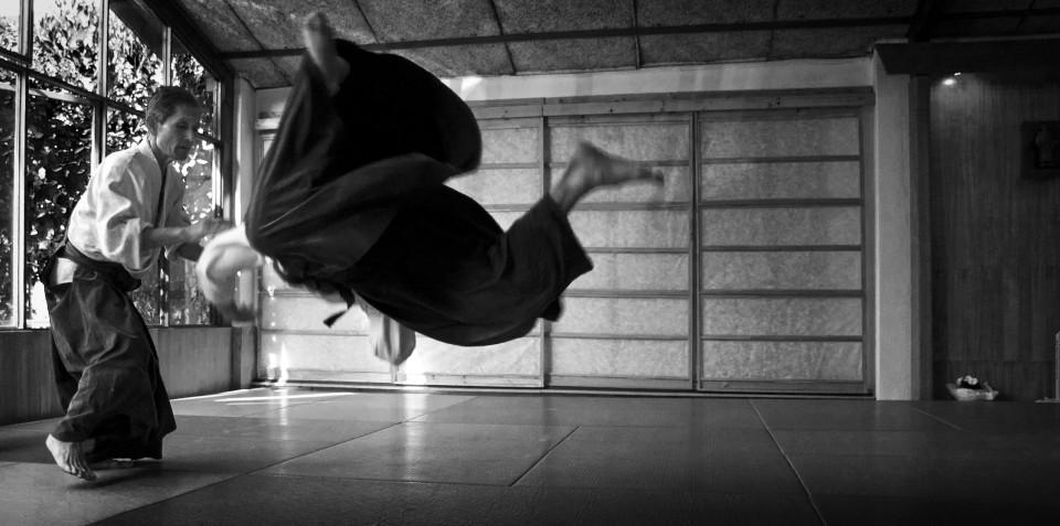 aikido en la defensa personal