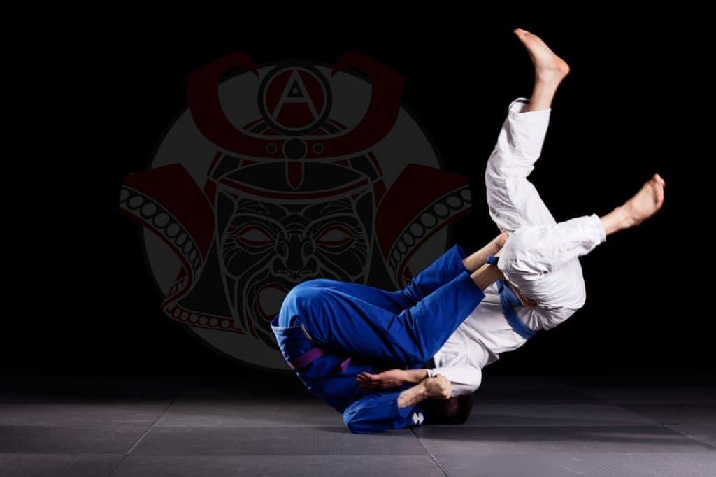 Técnicas de jiu jitsu