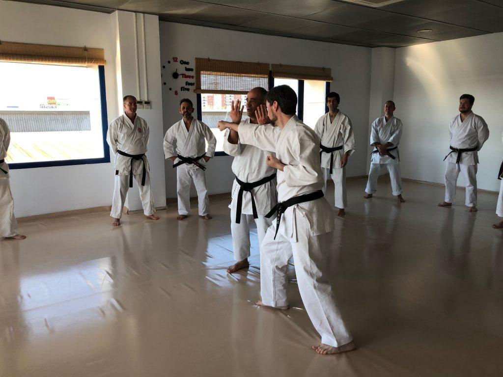 Karate-shito-ryu-4