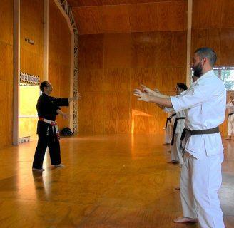 Karate shito ryu: katas posiciones y todo lo que necesita saber