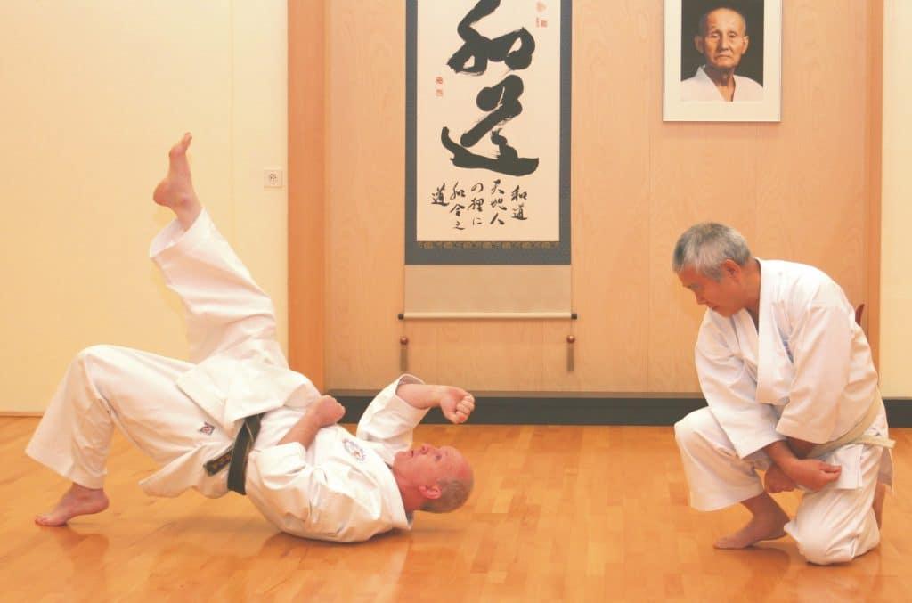 Karate-wado-ryu-2