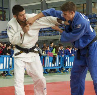 Técnicas de judo: por cinturón, de pie, de suelo, y más