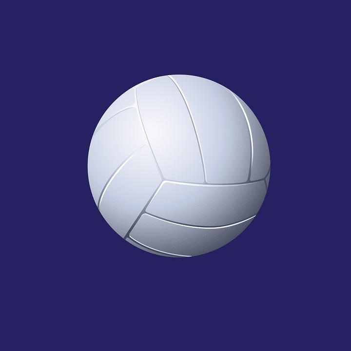 zaguero de voleibol y mas