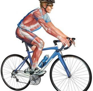 Beneficios del Ciclismo: Indoor y todo lo que desconoce