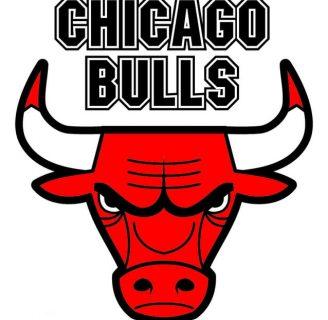 Chicago Bulls: historia, logo, roster y todo lo que necesita saber