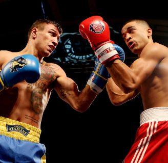 Entrenamiento de boxeo: con saco, profesional y más
