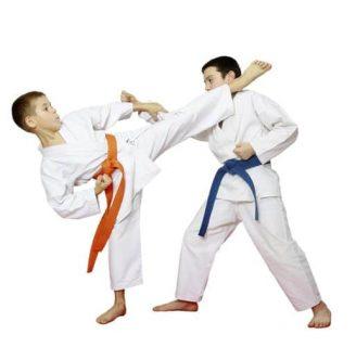 Karate: Historia, características, cinturones, técnicas y mucho más