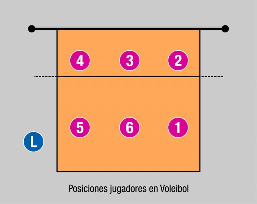 posiciones en la cancha de voleibol