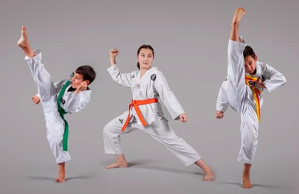 ver taekwondo