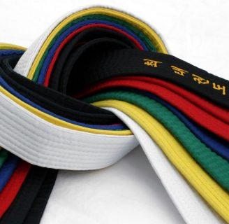 Cinturones de karate: colores, y todo lo que necesita saber