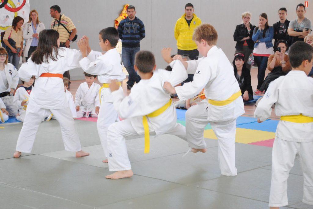tecnicas del judo