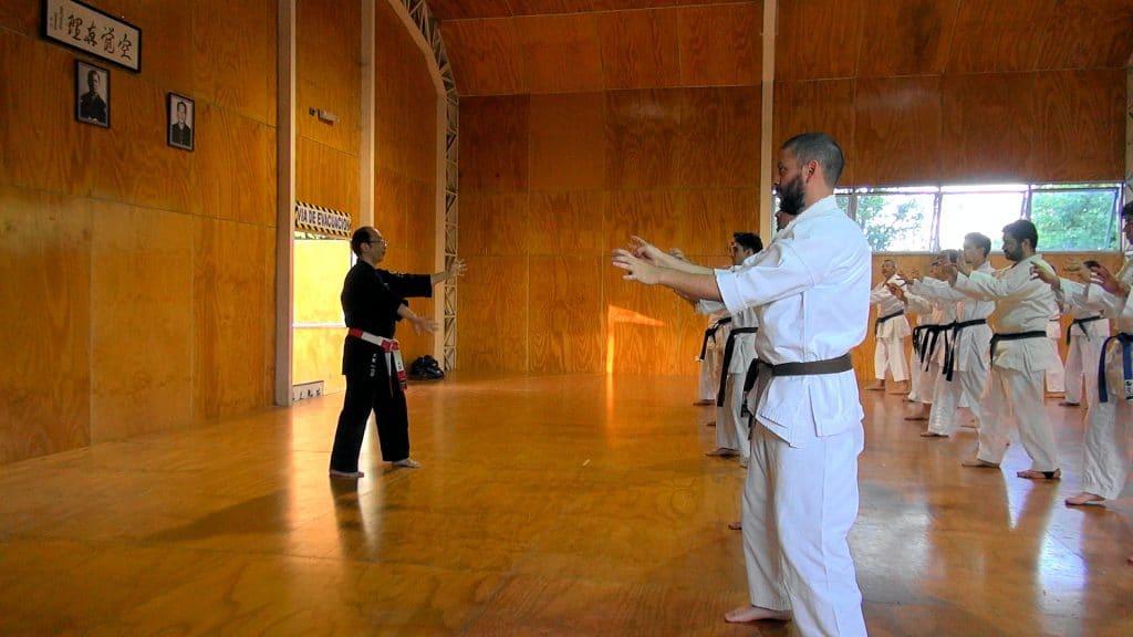 Karate-shito-ryu-3