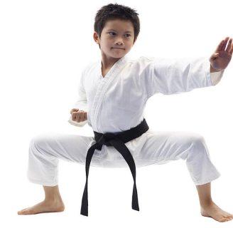 Karate wado ryu: katas, técnicas y todo lo que desconoce