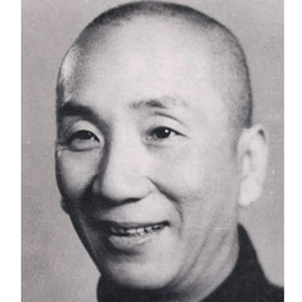 Maestro de kung fu ip man