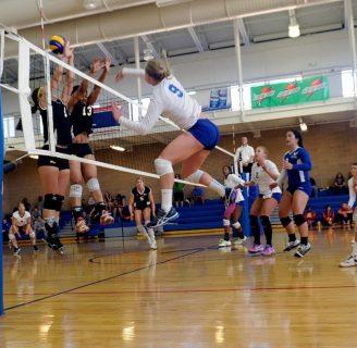 Zaguero de voleibol: zona, y todo lo que necesita saber